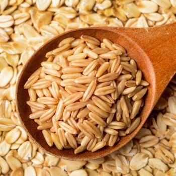 Buğday(Triticum)
