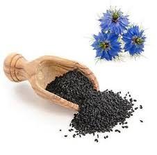 Dağ Çayı (Siyah Kimyon) (Nigella sativa)