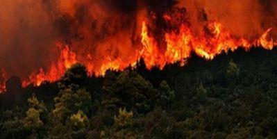 İlde Çıkan Yangınlar Kontrol Altına Alındı