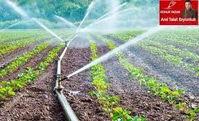 Aydın'da çiftçinin sulama sayısı düştü ücreti arttı!