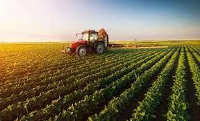 Bekir Pakdemirli 294 milyon lira tarımsal destek ödemesi yapılacak
