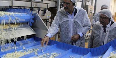 Bir tesis yapıldı patates üretimi 3'e katladı