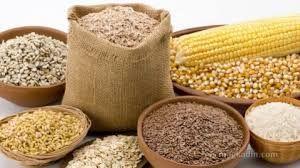 Buğday, arpa ve mısır ithalatında gümrük vergisi sıfırlandı bu karar Türkiye için ne anlam ifade ediyor?