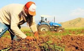 Çiftçi Kayıt Sistemi güncelleme ve tarımsal destekler! Son tarih 30 Haziran