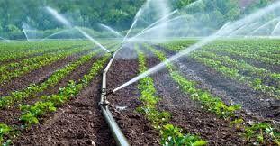 Çiftçinin tarımsal sulama borcu yeniden yapılandırıldı