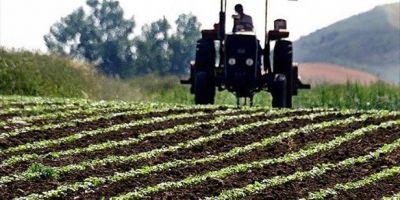 Çiftçiye önemli uyarı! Ekim nöbeti şartını yerine getirmeyen desteklerden yararlanamayacak!