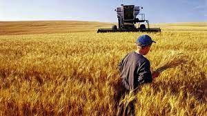 Danıştay'dan tarımsal destekler için önemli karar! Desteklerden artık gelir vergisi kesilmeyecek!