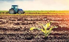 Gençleri tarıma çekmek için fikir yarışması...