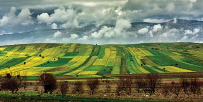 Hisseli tarım arazilerinin satışında vergi kolaylığı
