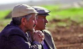 Kars'ta çiftçinin ahırındaki hayvanlar yediemine alındı!
