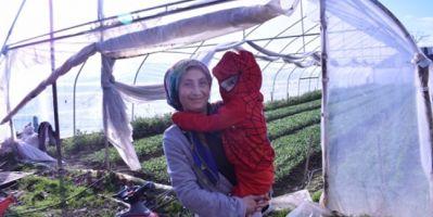 Samsun Tarım İl Müdürü Ay, Dünya Kadın Çiftçiler Gününü Kutladı