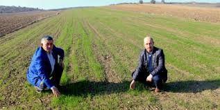 Sosyolog Ergin Kahveci'den önemli uyarı: Çiftçi tarlayı ahırı terk etti mi bir daha döndüremeyiz!