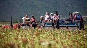 stihdam paketinde çiftçi borçlarının yeniden yapılandırma beklentisi!