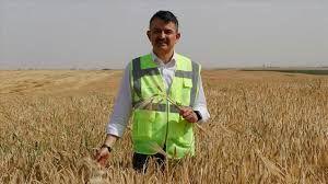 Tarım Bakanı Pakdemirli'den: Hububat fiyatı açıklaması