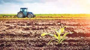 Tarım Bakanlığı açıkladı! Kırsal kalkınma yatırımlarına hibe desteği verilecek