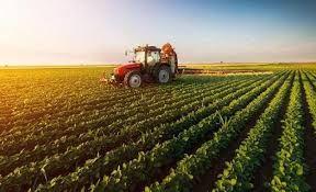 Tarım İl Müdürlüğünden Tarsim uyarısı: 2020 yılı uygulamaları belli oldu
