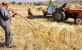 Tarım Kredi borçları yapılandırma kapsamına alınmadı! Borç batağındaki çiftçiye kötü haber!