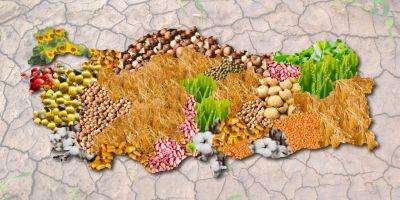 Tarım Sektörüne Yatırım Temasına Dayalı Türkiye' nin İlk ve Tek Fonu