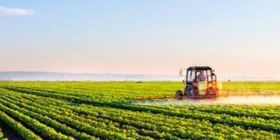 Tarımda faiz indirimini çiftçi nasıl karşıladı? Seyhan Ziraat Odasından önemli açıklama