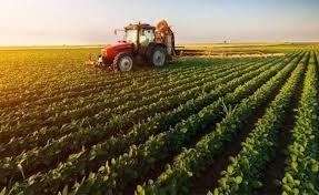 Tarımsal destekler belli oldu: Çiftçi 2020 yılında hangi ürüne ne kadar destek alacak?