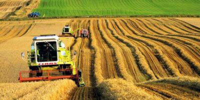 Tarımsal Girdi Fiyatları Yıllık %21 Arttı