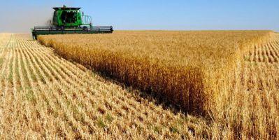TARSİM: Tarımda sigortalı varlık değir arttı