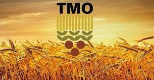 TMO hububat ve bakliyatta Nisan ayı yağış, ekiliş ve gelişim analizini yayınladı