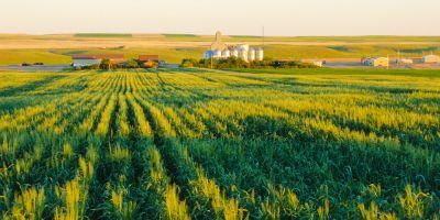 Toprak İşlemesiz Tarım Yaygınlaşıyor