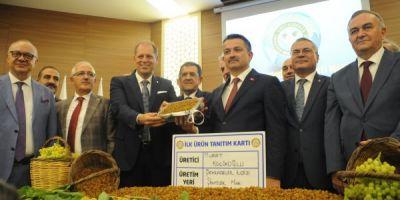 Türk Kuru Üzümüne 80 Milyon Dolarlık Dokunuş