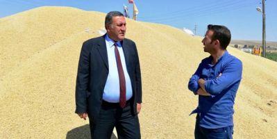 Türkiye neden arpa ithal ediyor?