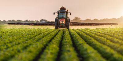 Türkiye'nin kaybettiği tarım arazilerinin 3'te 2'si yeniden üretime kazandırılabilir!