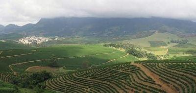 Türkiye Tarımsal Hasılada Avrupa Birincisi